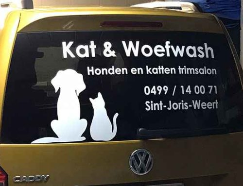 Kat & Woefwash